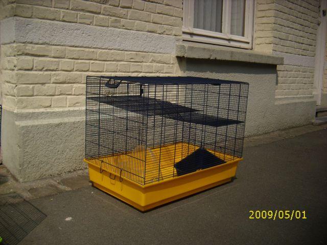 vends grande cage pour rongeurs petites annonces animaux houplines. Black Bedroom Furniture Sets. Home Design Ideas